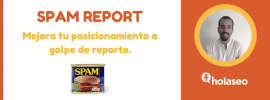 spam-report-seo